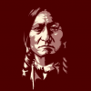 Chief Sitting Bull 1